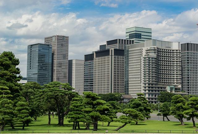 東京の皇居外苑とオフィスビル群